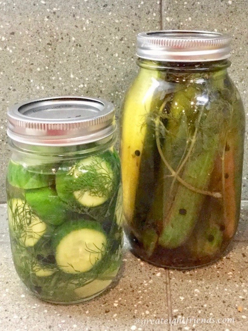 Are Dill Pickles Healthy  Classic Dill Pickles a healthy snack from your own jar