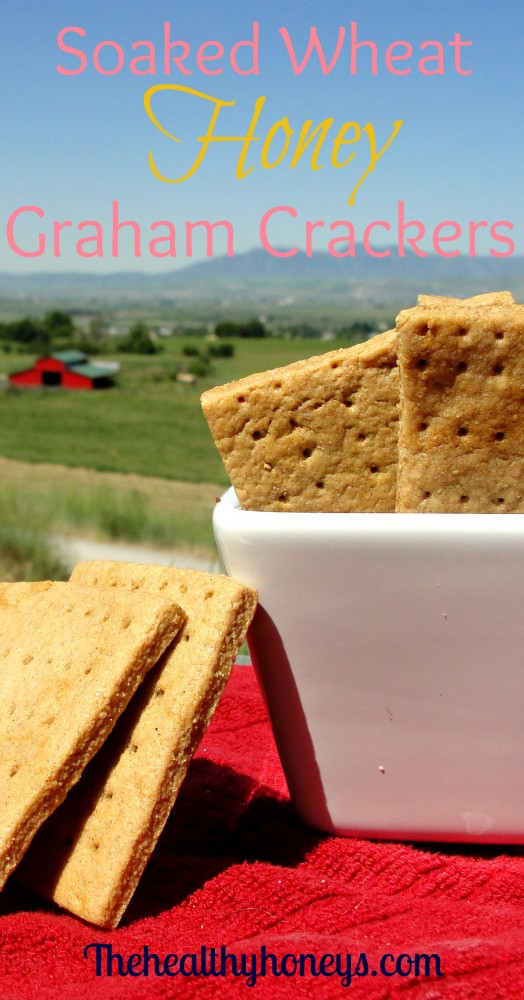 Are Graham Crackers Healthy  Soaked Wheat Honey Graham Crackers The Healthy Honeys