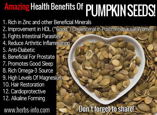 Are Pumpkin Seeds Healthy  Amazing Health Benefits Pumpkin Seeds Herbs Info