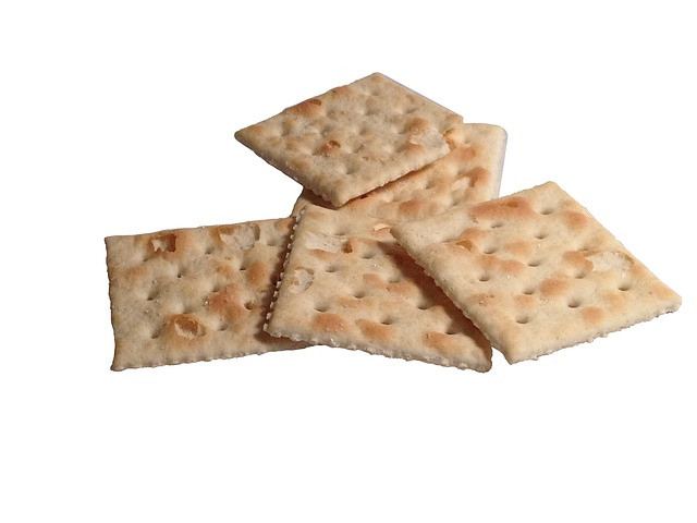 Are Saltine Crackers Healthy  Can Dogs Eat Saltine Crackers It s a Doggie Thing