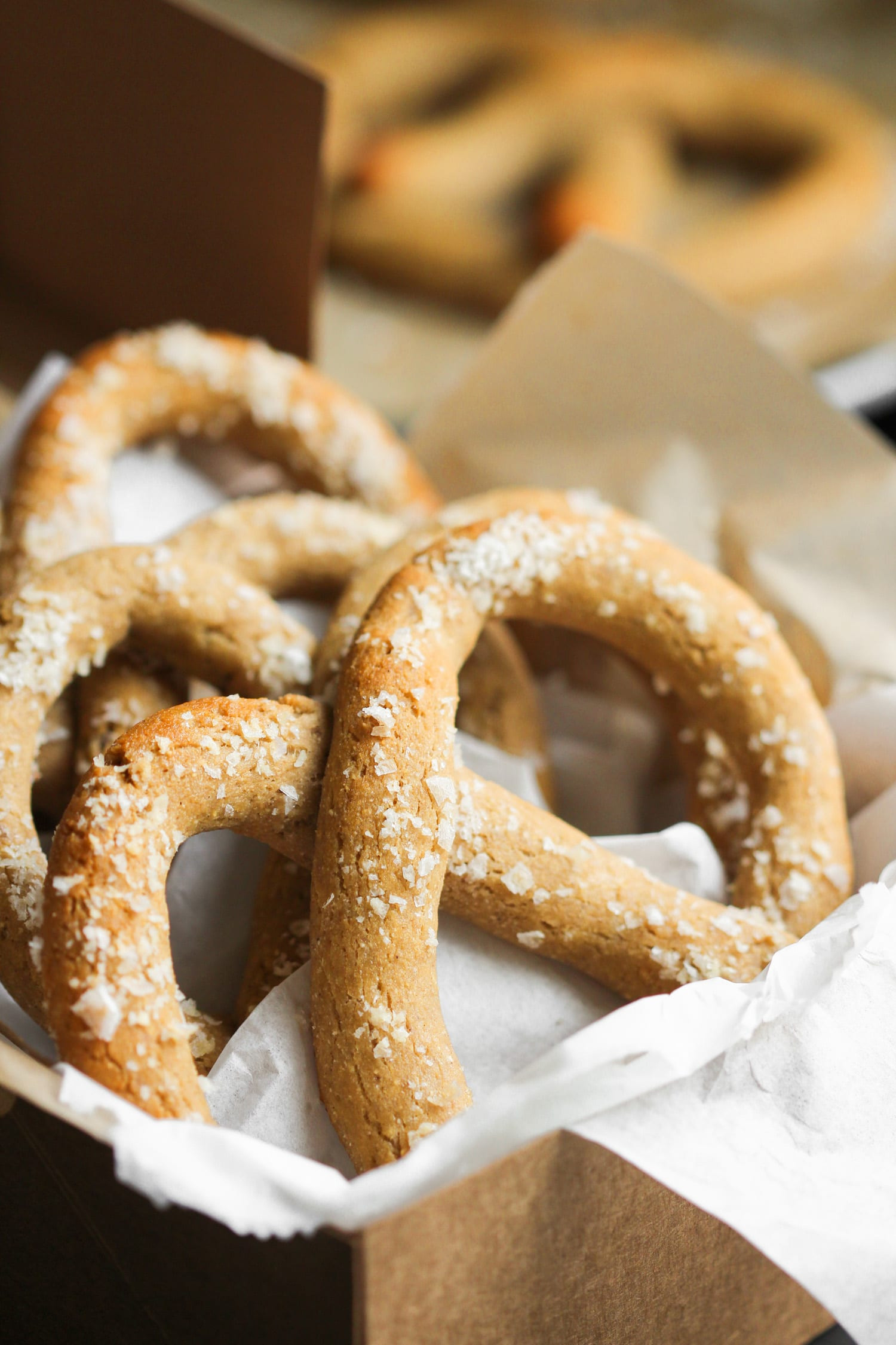 Are Soft Pretzels Healthy  Healthy Homemade Low Carb and Gluten Free Soft Pretzels Recipe
