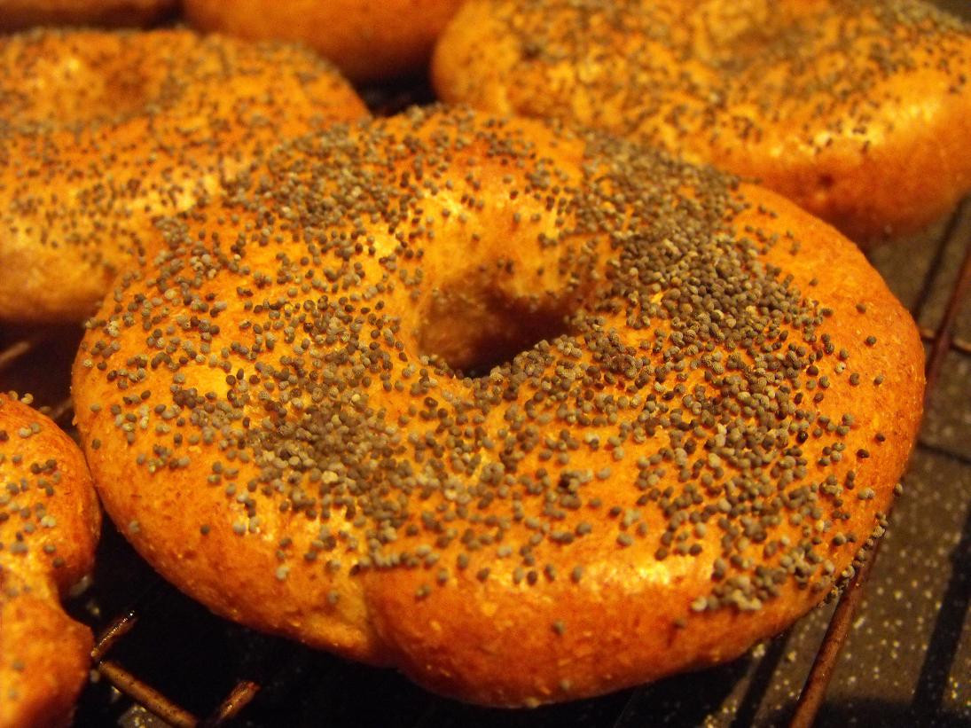 Are Whole Wheat Bagels Healthy  Whole Wheat Bagels Hungry Healthy Happy