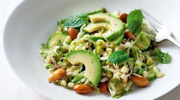 Avocado Recipes Healthy  Healthy Avocado Lunch Recipes Women Daily Magazine
