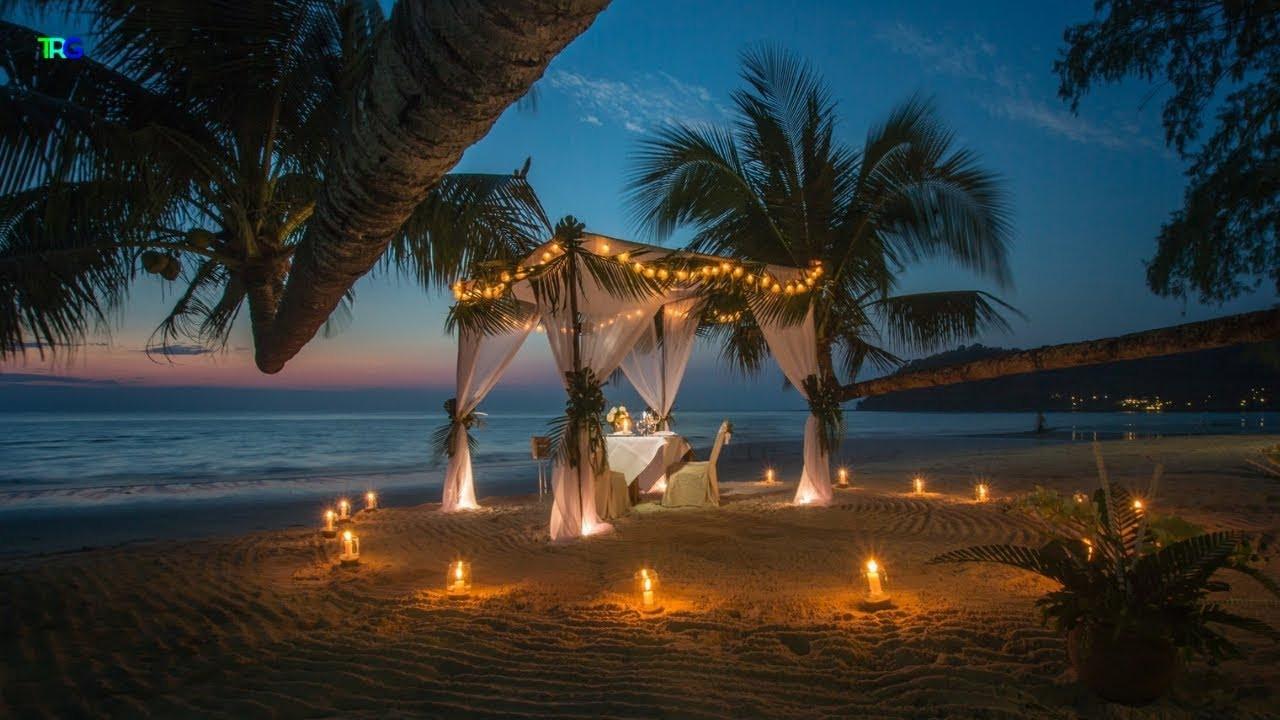 Background Music For Wedding Dinner  Romantic Wedding Dinner Jazz Music Playlist
