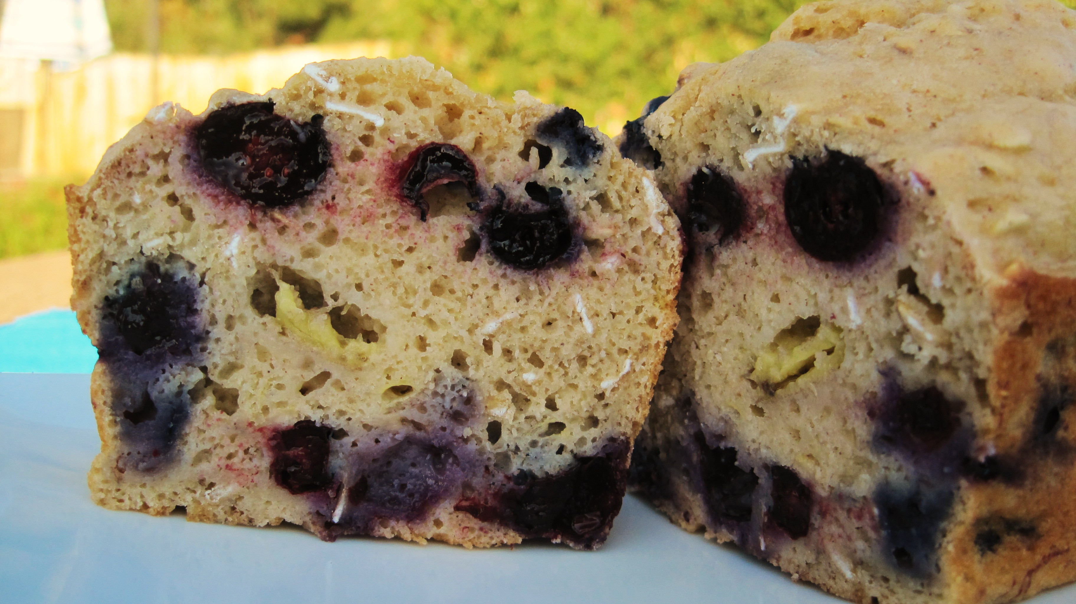 Banana Blueberry Bread Healthy  Healthy Banana Blueberry Bread & A Tasty Flop