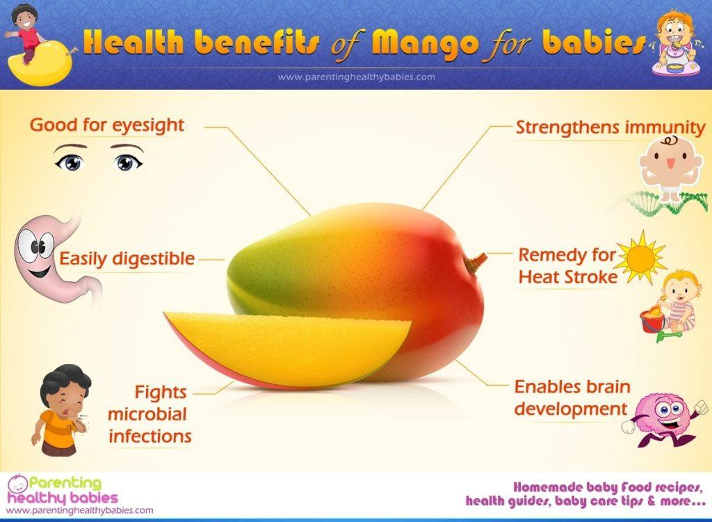 Benefits Of Healthy Snacks  Mango in baby food Health Benefits