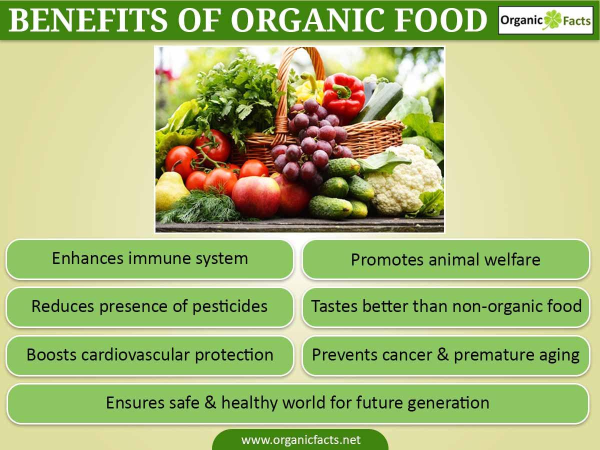 Benefits Of Healthy Snacks  9 Amazing Benefits Organic Food