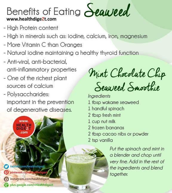 Benefits Of Healthy Snacks  Health Benefits of Seaweeds Food Delights