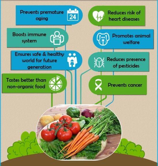 Benefits Of Healthy Snacks  Diabeticpick A plete Diabetes line Stores in India