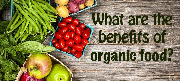Benefits Of Healthy Snacks  How Going Organic Benefits Your Body