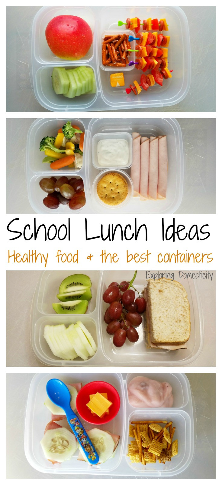 Best Healthy Lunches  School Lunch Ideas healthy foods and the best containers