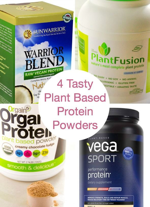 Best Organic Vegetarian Protein Powder  17 Best images about High Calorie & Protein Rich Diet on