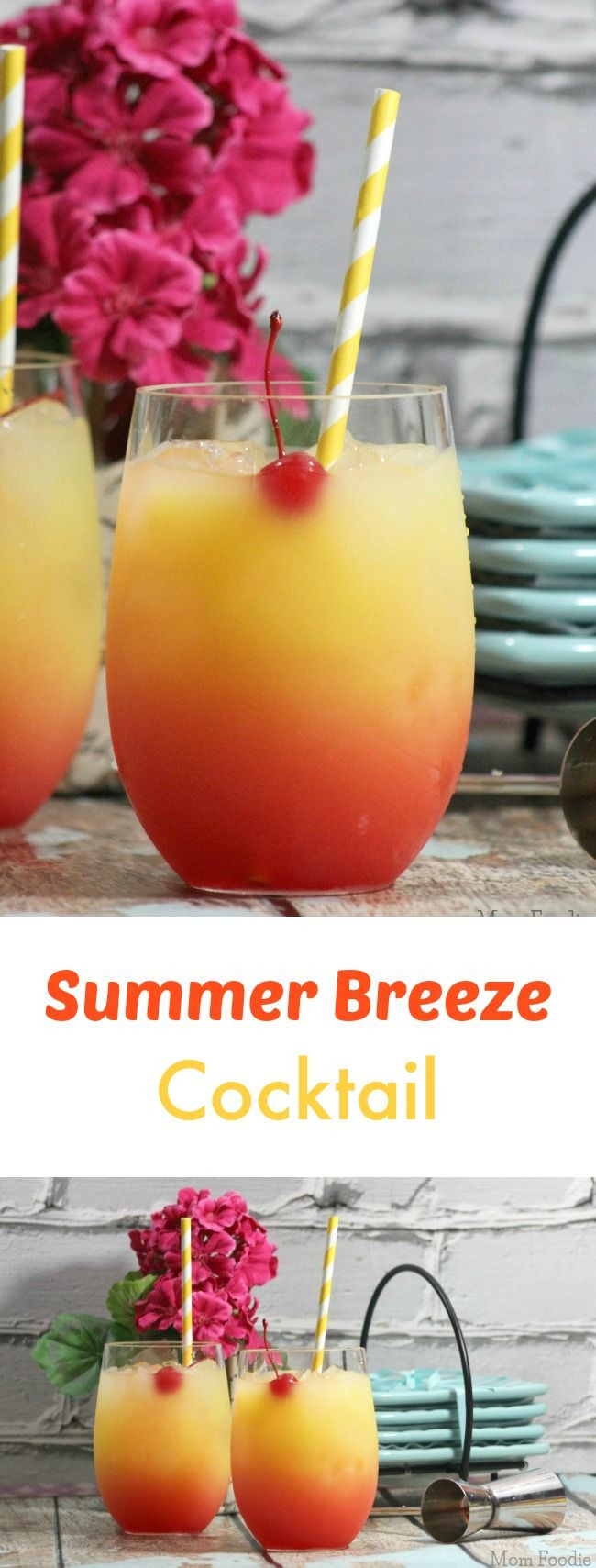 Best Summer Drinks With Vodka  1000 best images about Alcoholic Drink Recipes on