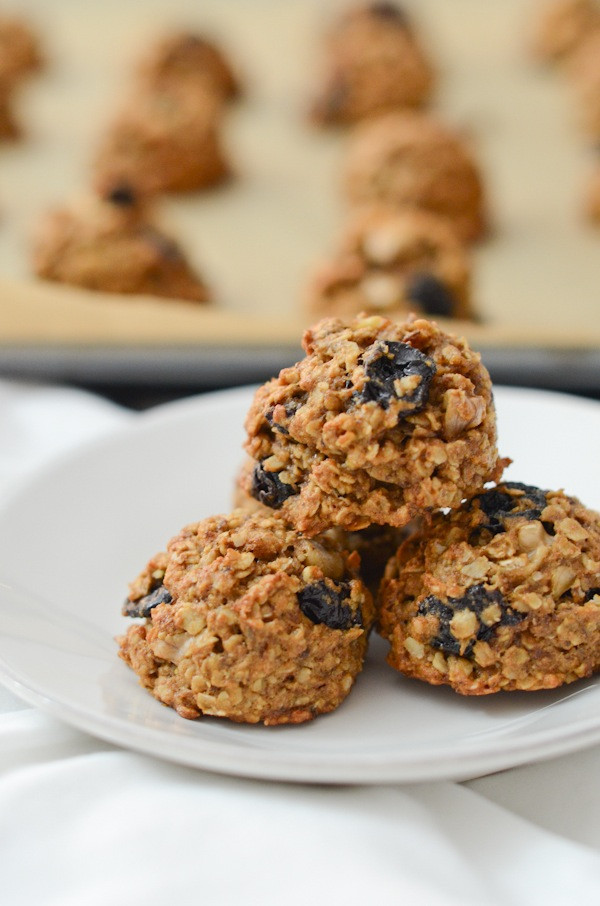Breakfast Cookie Recipe Healthy  healthy breakfast cookies recipe