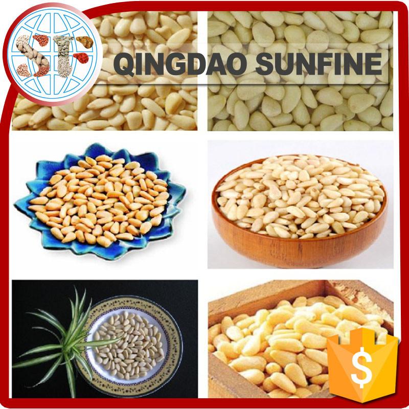 Bulk Healthy Snacks  Health Food Bulk Organic Pine Nuts Buy Pine Nut Organic