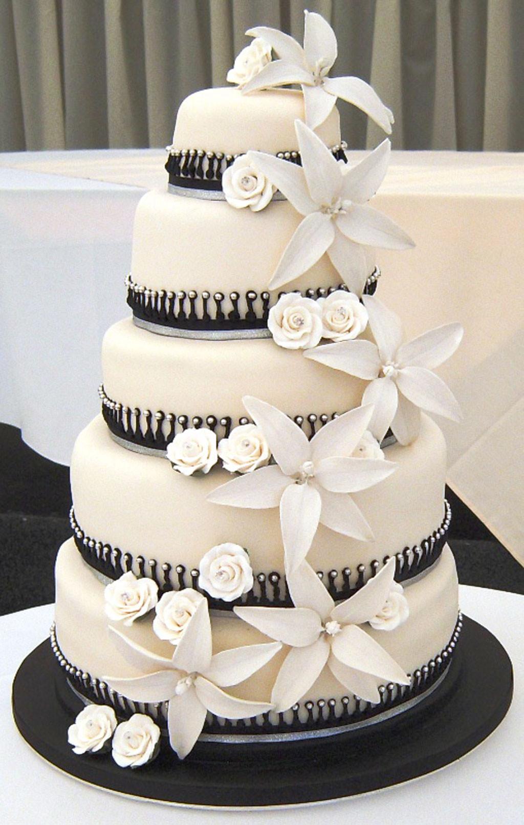 Cakes Design For Wedding  Black White Wedding Cake Designs Wedding Cake Cake Ideas