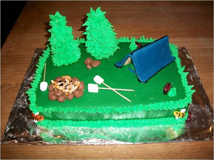 Camping Birthday Cake  CAMPING SCENE CAKE