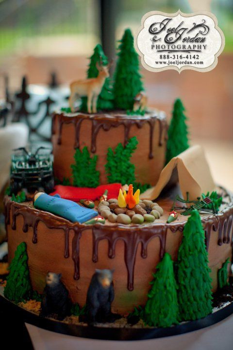 Camping Birthday Cake  Southern Blue Celebrations CAMPING THEMED CAKES CUPCAKES