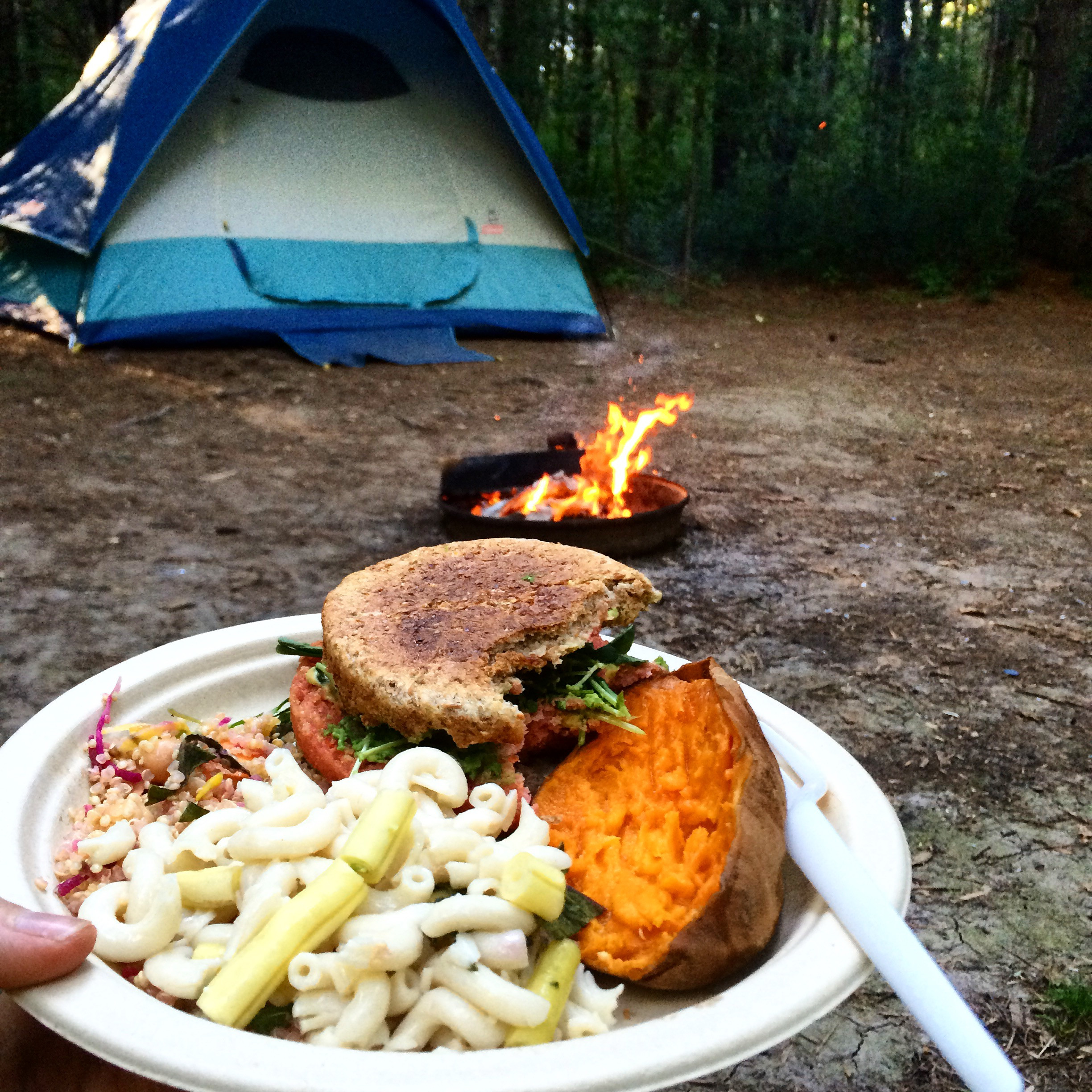 Camping Dinners For Two  Camping Food Related Keywords Camping Food Long Tail