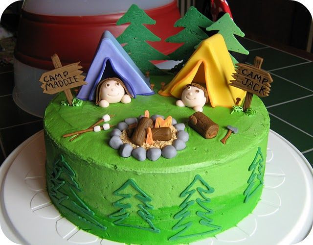 Camping Themed Birthday Cake  Camping Theme Cakes on Pinterest