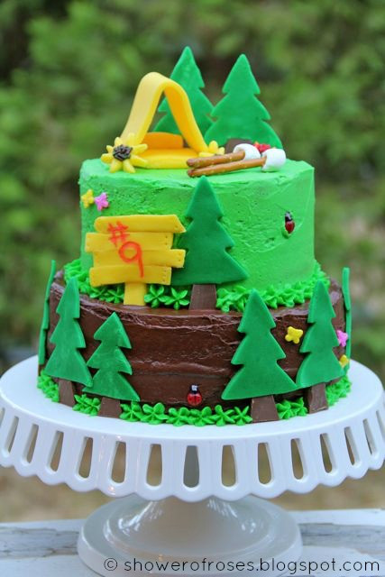 Camping Themed Birthday Cake  Shower of Roses A Camping Themed Birthday Cake