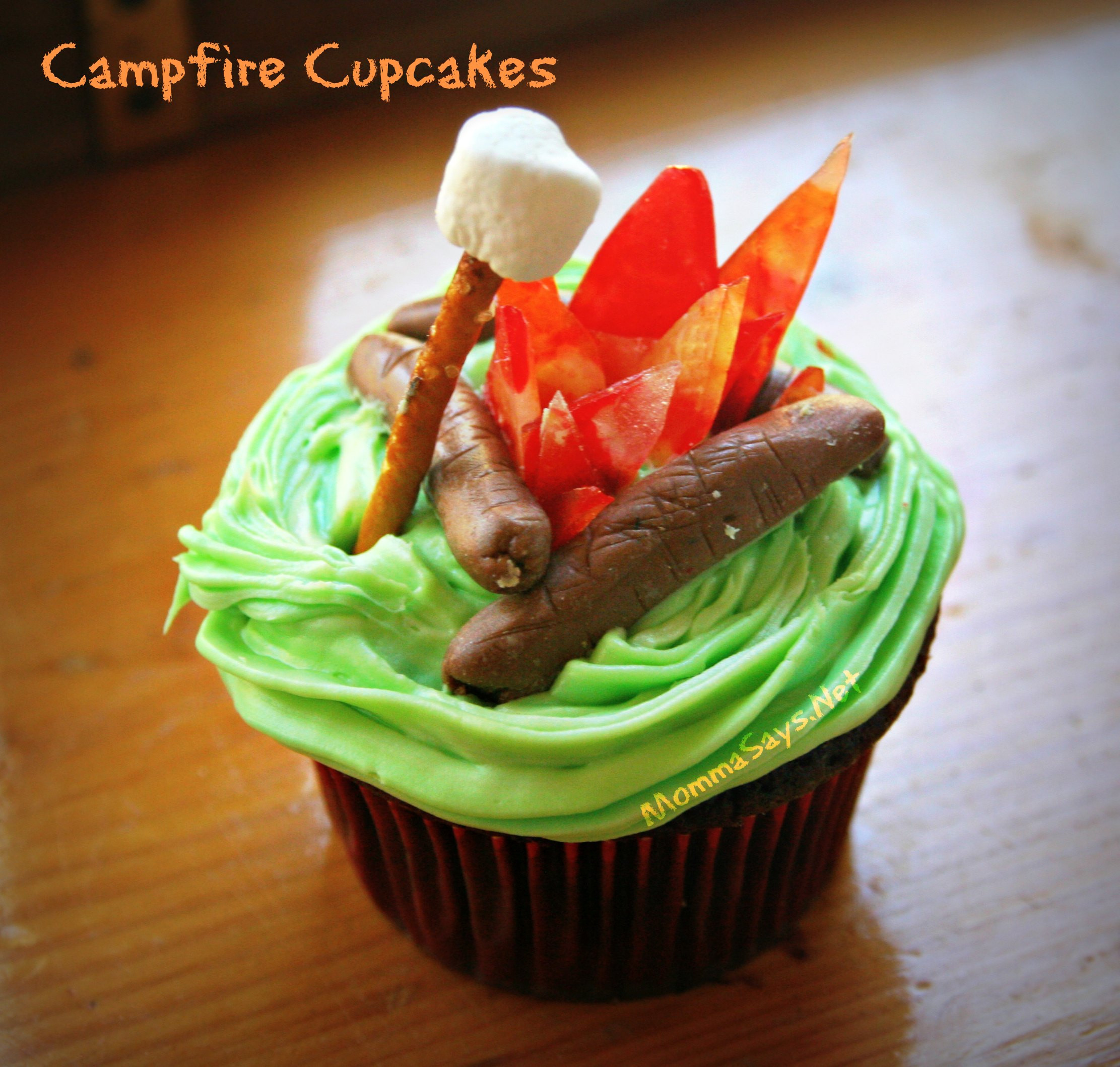 Camping Themed Cupcakes  Campfire Cupcakes and Cake MommaSays
