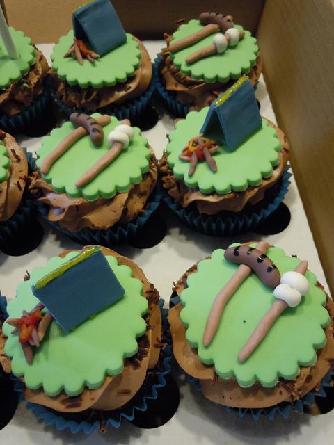 Camping Themed Cupcakes  Camping themed cupcakes