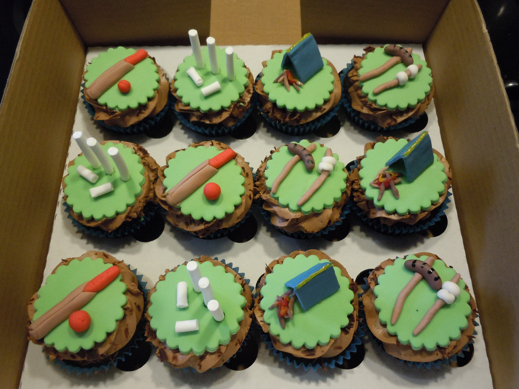 Camping Themed Cupcakes  Cricket and camping themed cupcakes a photo on Flickriver