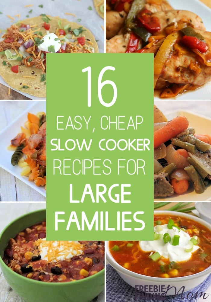 Cheap Healthy Dinners For Two  16 Easy Cheap Slow Cooker Recipes For Families