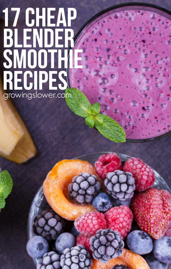 Cheap Healthy Smoothies  Best Cheap Smoothie Blender 17 Smoothie Recipes to Make