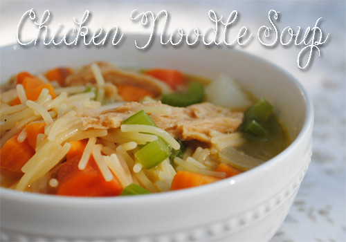 Chicken Noodle Soup Healthy  Healthy Food Chicken Noodle Soup Recipe