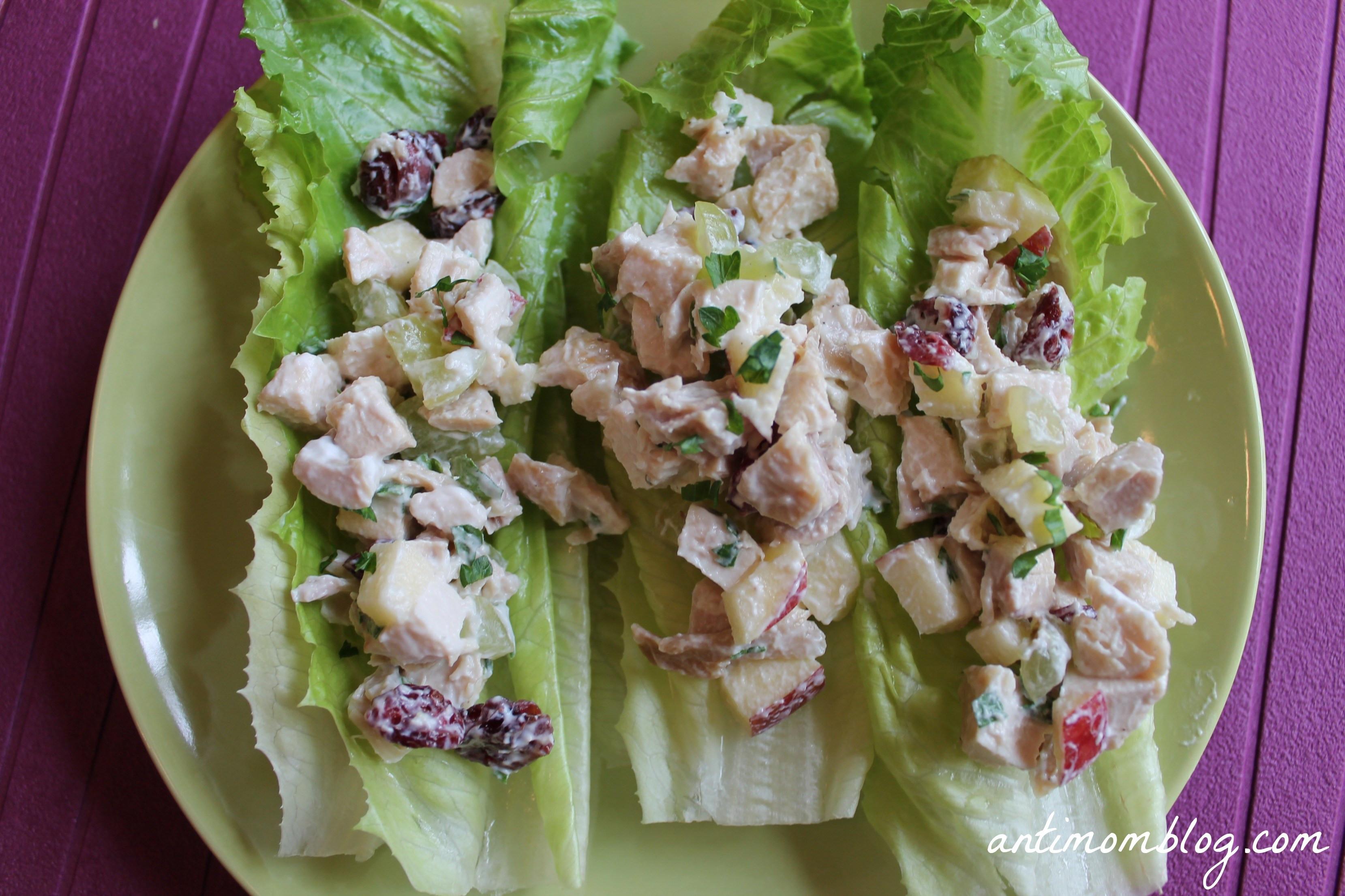 Chicken Salad Healthy  Healthy Chicken Salad Recipe The Anti Mom Blog