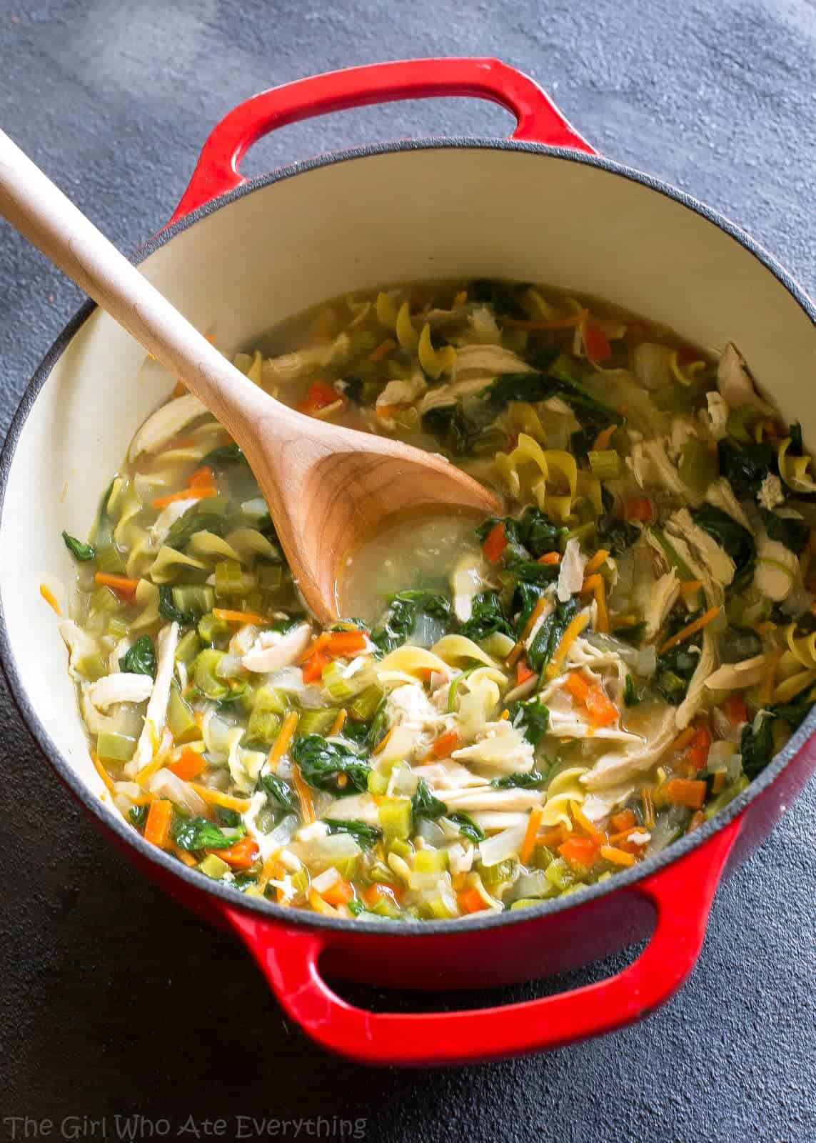 Chicken Soup Recipe Healthy  Healthy Ve able Chicken Soup The Girl Who Ate Everything