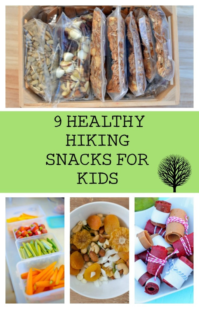 Childrens Healthy Snacks  Kid Approved Healthy Hiking Snacks