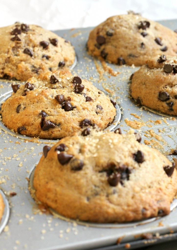 Chocolate Chip Muffins Healthy the Best Healthy Chocolate Chip Muffins Bakery Style