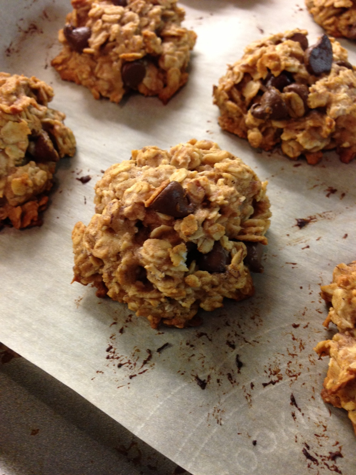 Chocolate Chip Oatmeal Cookies Healthy  Healthy Oatmeal Chocolate Chip Cookies Lauren Follett