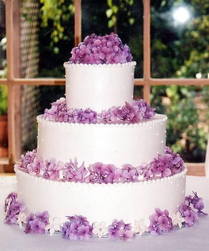 Costco Wedding Cakes Designs  Costco Wedding Cakes Costco Wedding Cakes Designs For