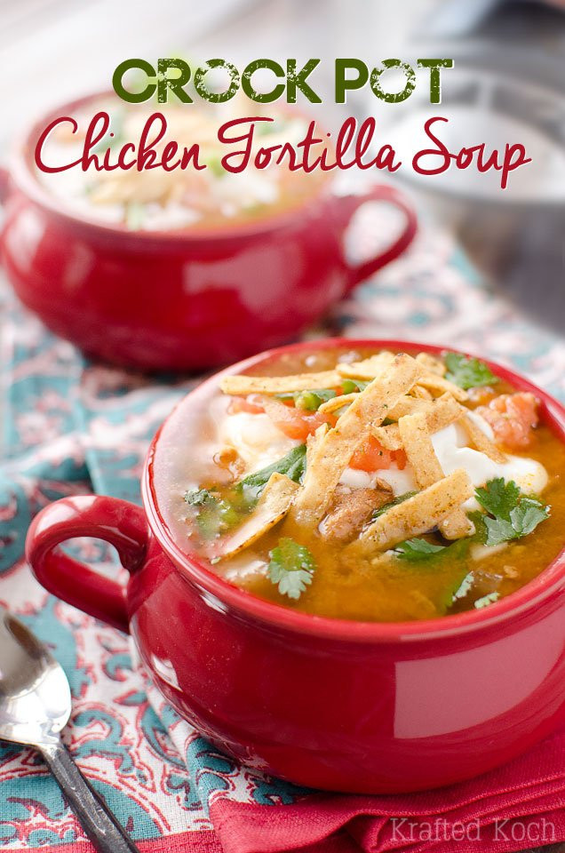 Crock Pot Chicken Soup Recipes Healthy  CROCK POT CHICKEN TORTILLA SOUP – Recipes for Diabetes