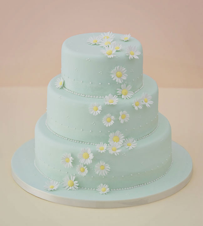 Daisy Wedding Cakes  Celebration & Wedding Cakes By Sarah Louise Hampshire