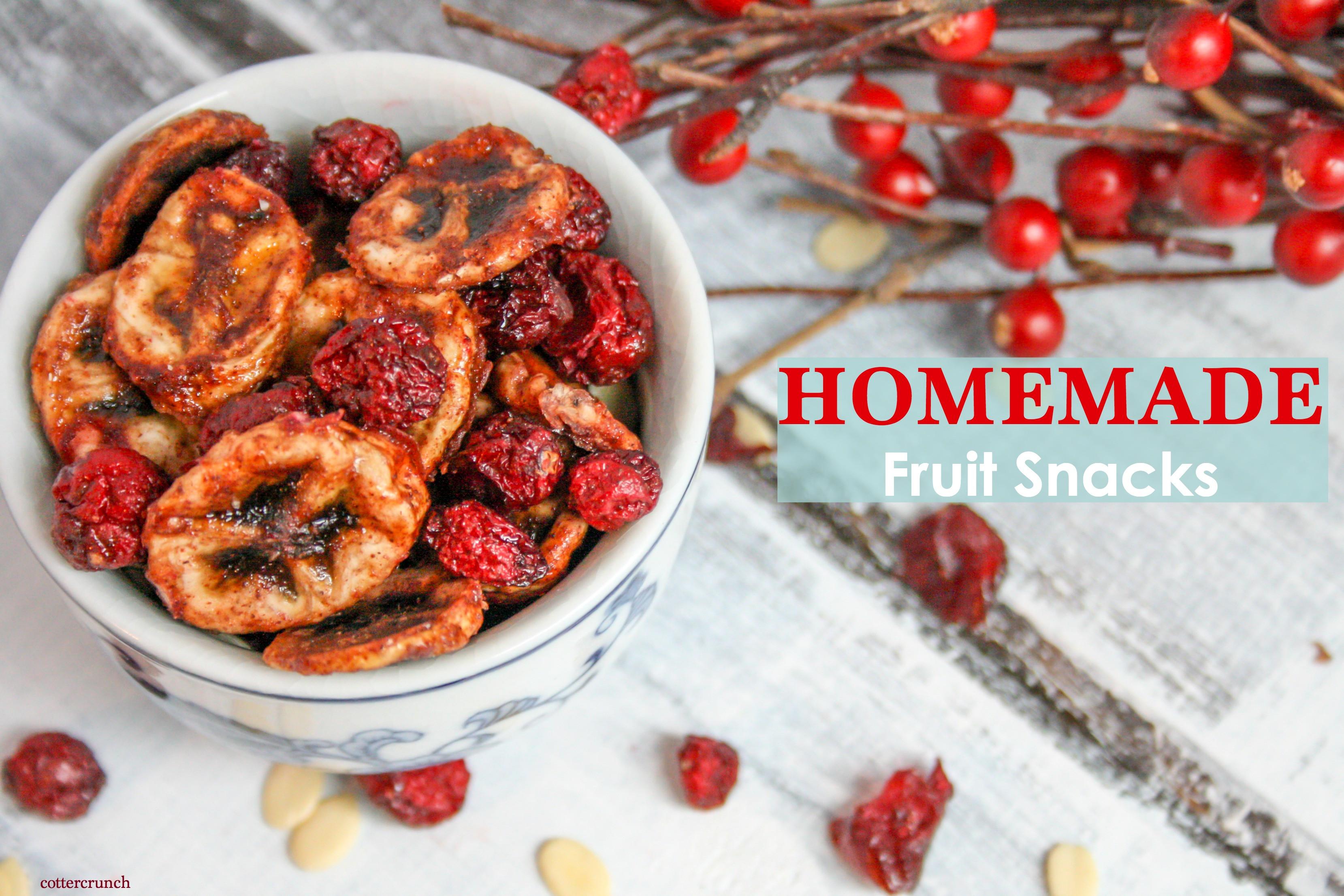 Diy Healthy Snacks  Lower Sugar Homemade Healthy Fruit Snacks