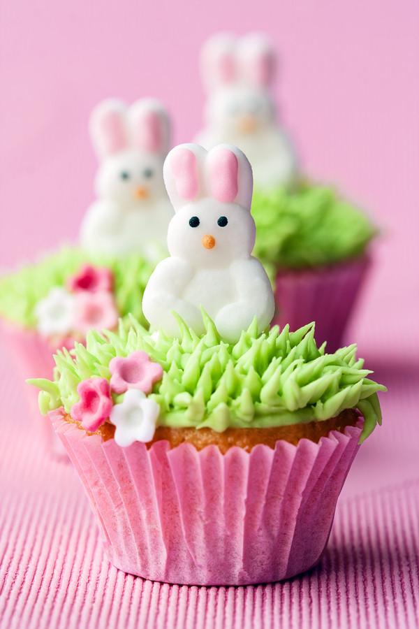 Easter Cupcakes Ideas  25 Cute Easter Cupcake Ideas Not Quite Susie Homemaker