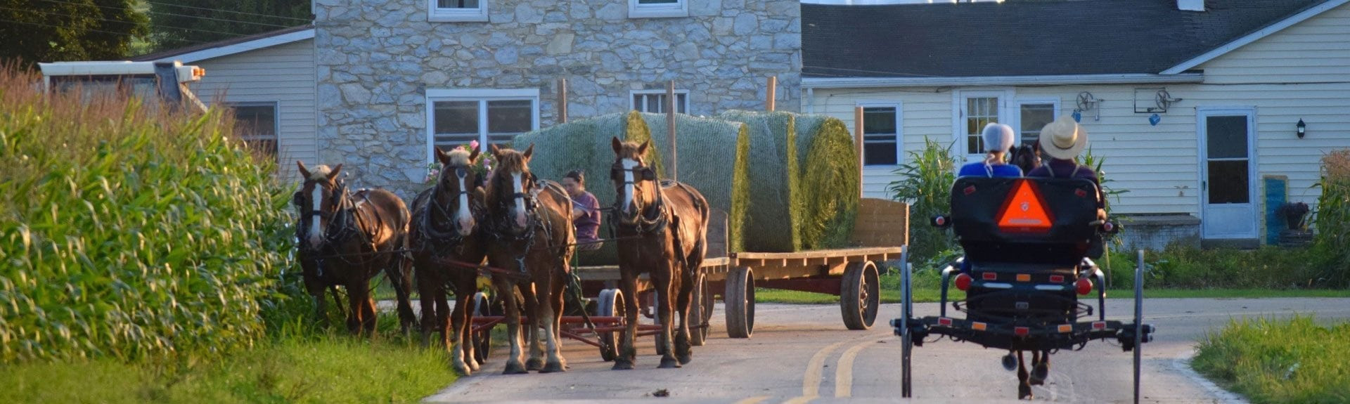 Easter Dinner Lancaster Pa  Amish Sightseeing Bus Trips Group Tours in Lancaster