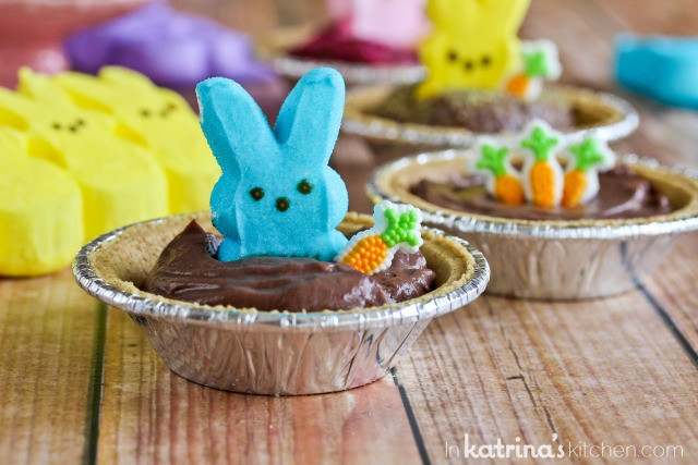 Easter Pudding Desserts  Peeps Pudding S mores Pies Recipe