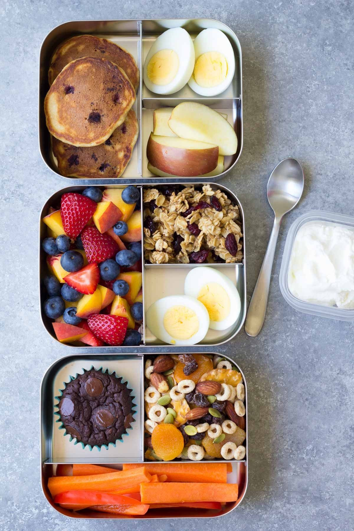 Easy Healthy Lunches To Go  250 Easy School Lunch Box Ideas Dishes and Dust Bunnies