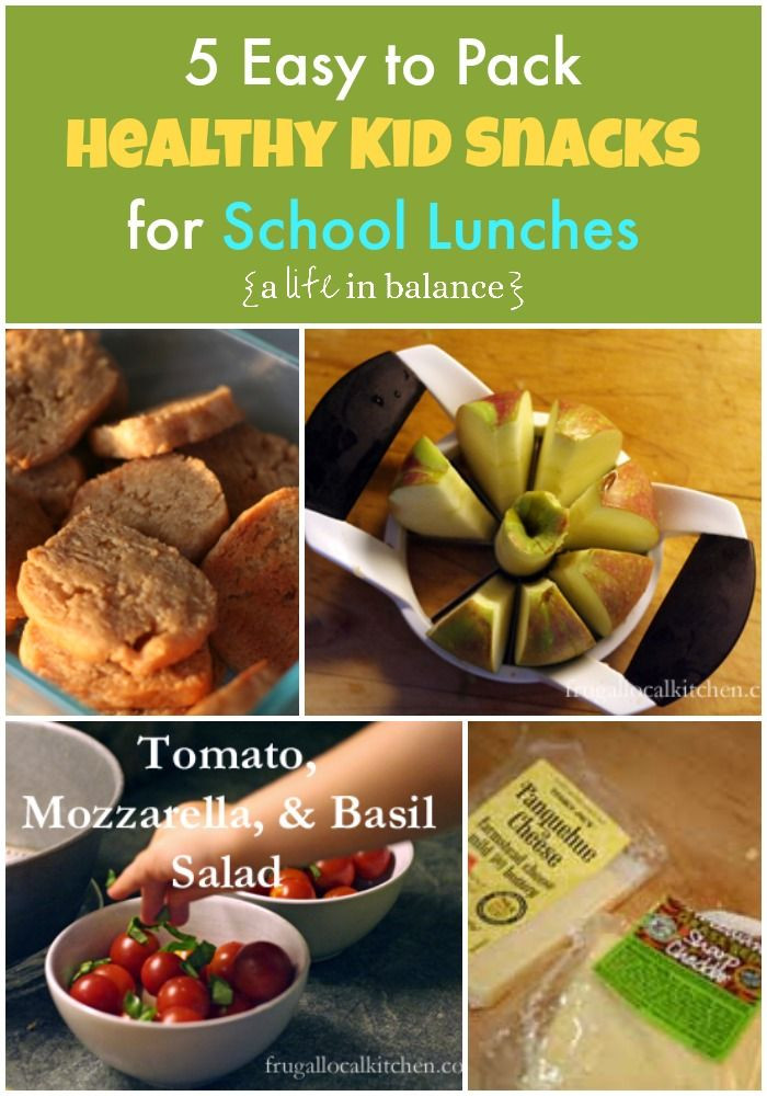 Easy Healthy Lunches To Pack  5 Easy to Pack Healthy Kid Snacks for School Lunches