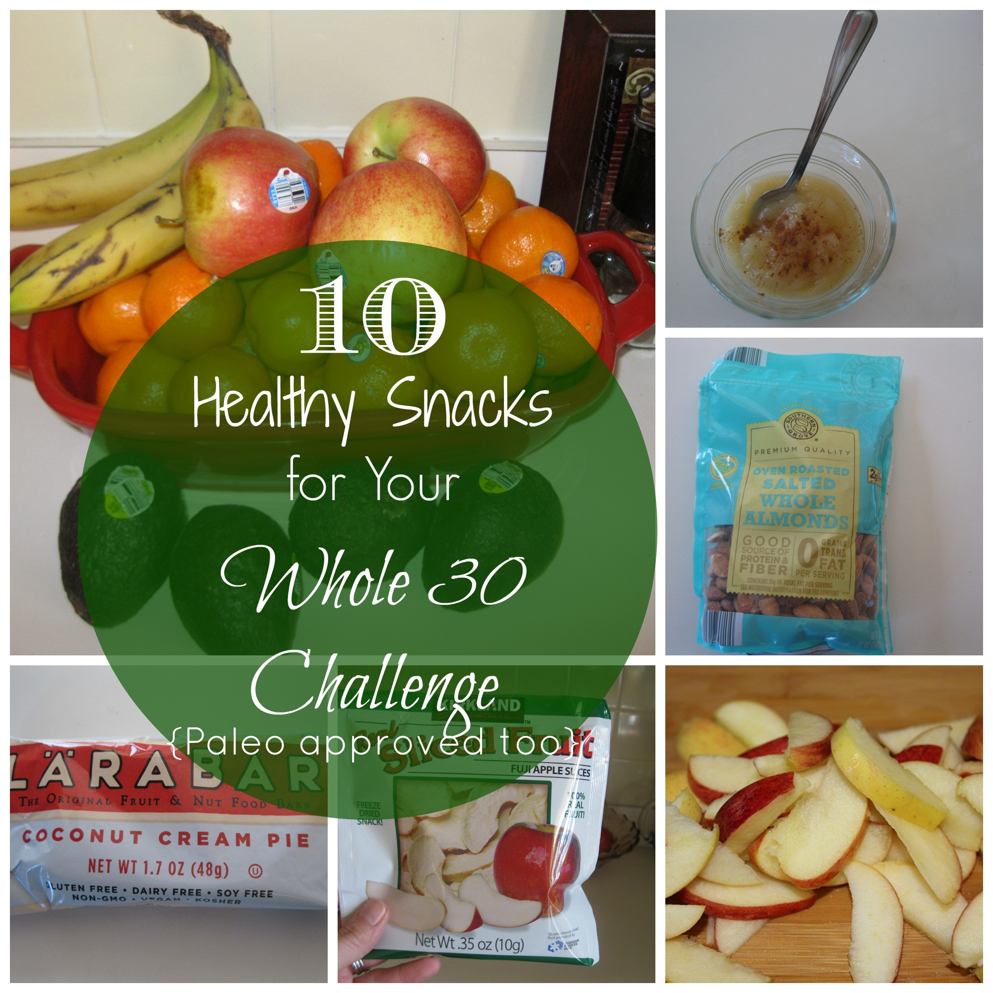 Easy Healthy Snacks  10 Healthy Snacks for Your Whole 30 Challenge Paleo
