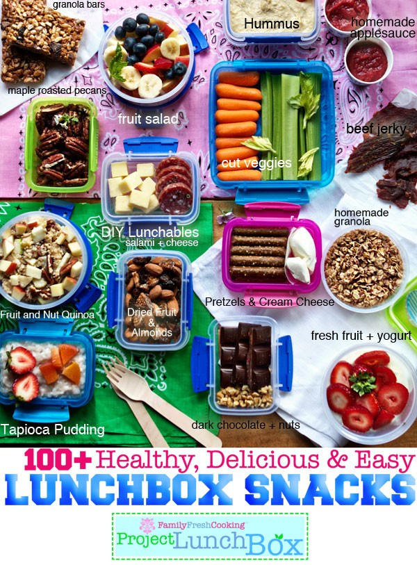 Easy Healthy Snacks On The Go  100 Healthy Delicious and Easy Lunchbox Snacks Marla
