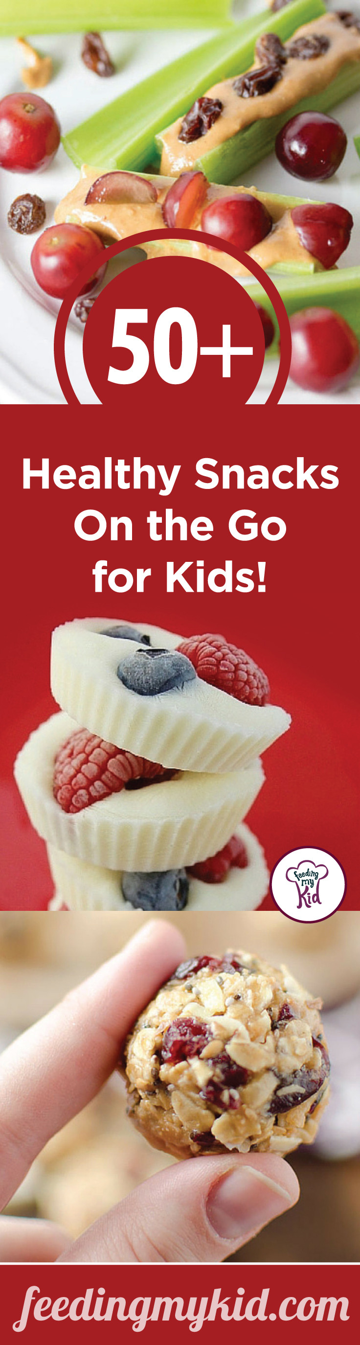 Easy Healthy Snacks On The Go  Easy Snacks for Kids 50 Healthy Snacks the Go