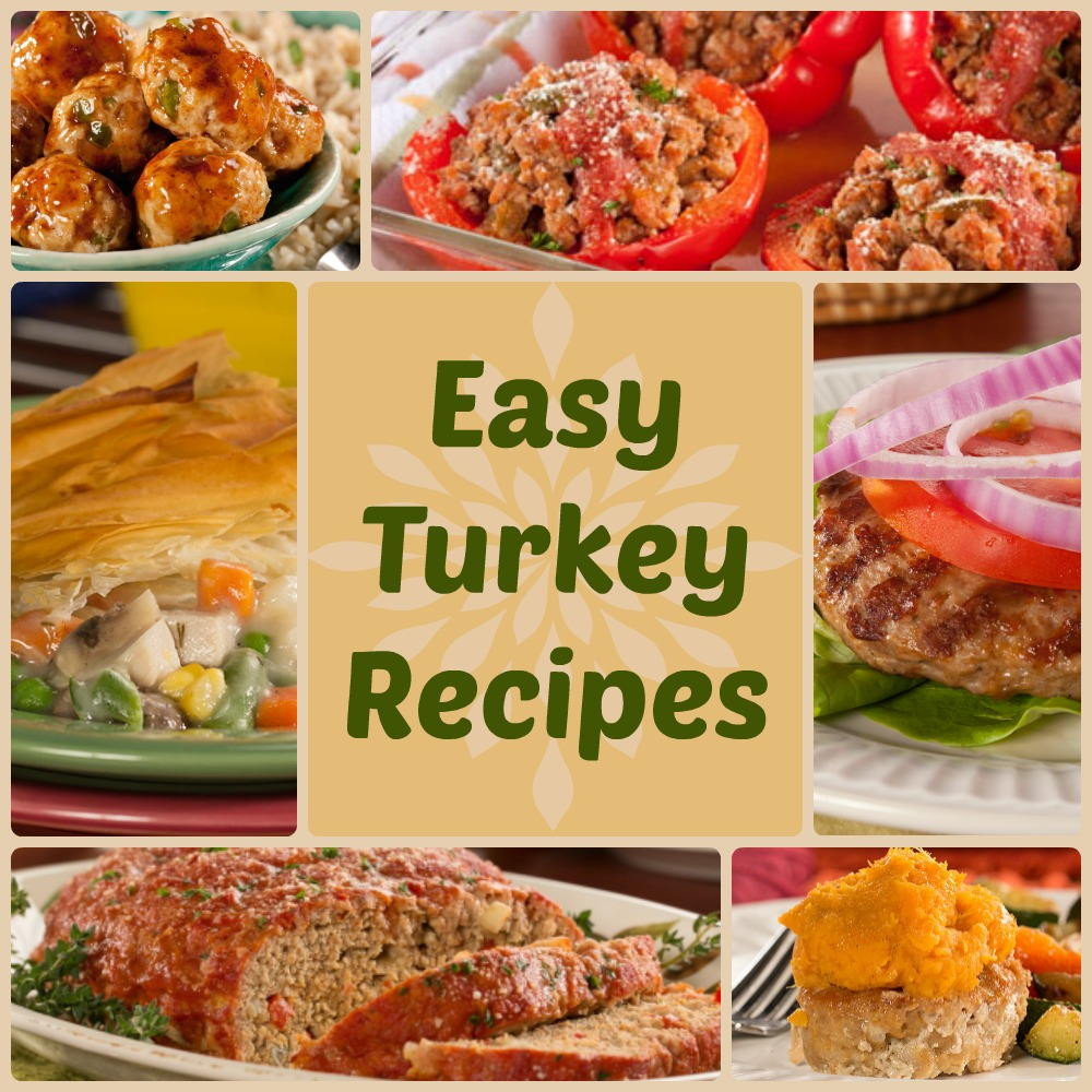 Easy Healthy Thanksgiving Recipes the top 20 Ideas About Quick & Healthy Dinner Recipes 18 Easy Turkey Recipes