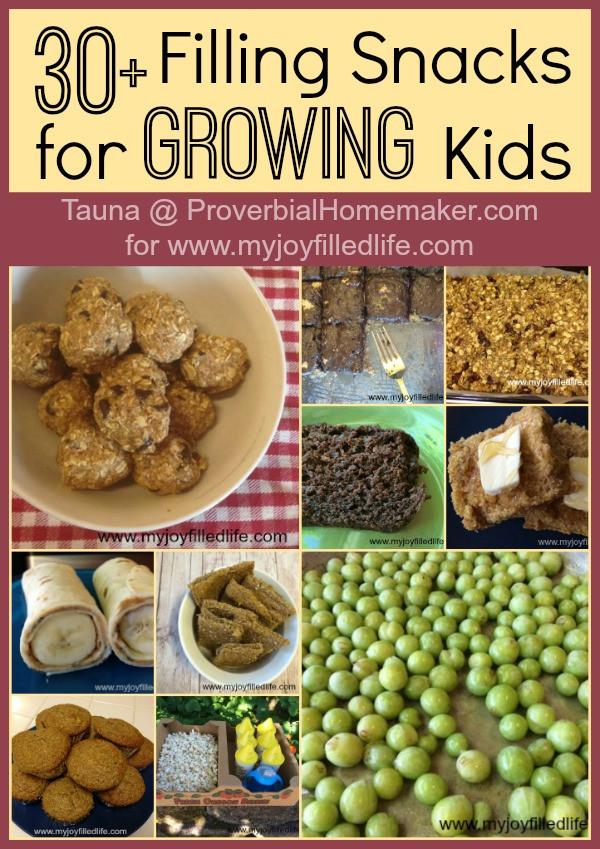 Filling Healthy Snacks  30 Filling Snacks for Growing Kids Proverbial Homemaker